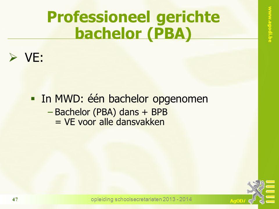 Professioneel gerichte bachelor (PBA)