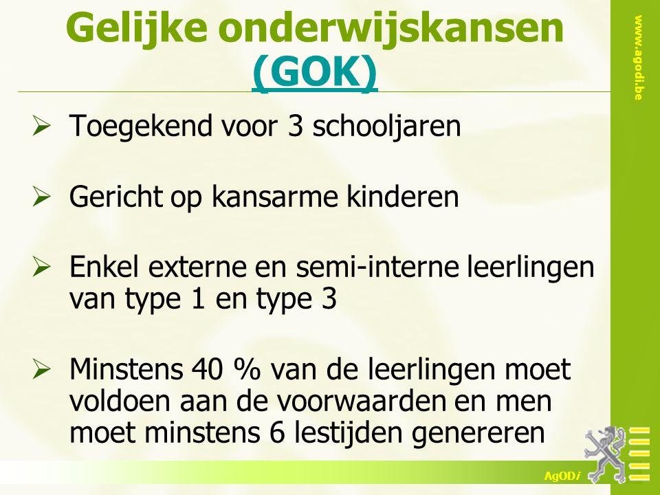 Gelijke onderwijskansen (GOK)