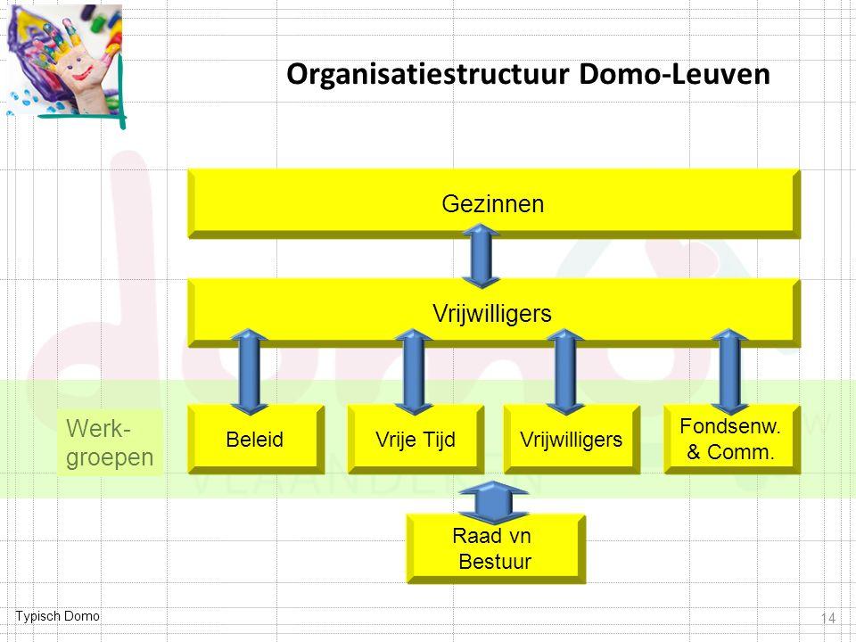 Organisatiestructuur Domo-Leuven