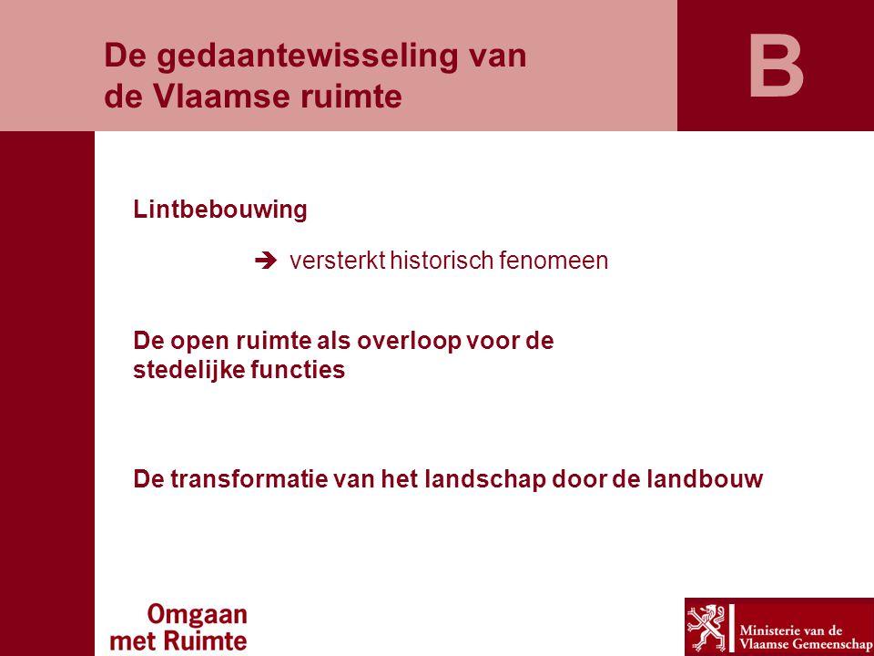 B De gedaantewisseling van de Vlaamse ruimte Lintbebouwing