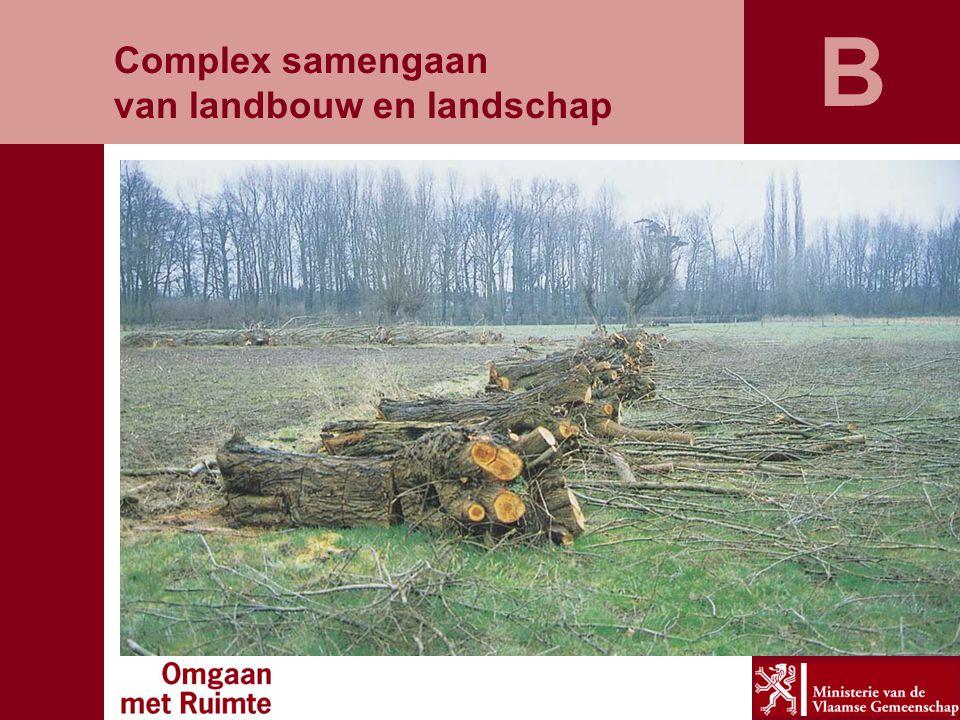 B Complex samengaan van landbouw en landschap