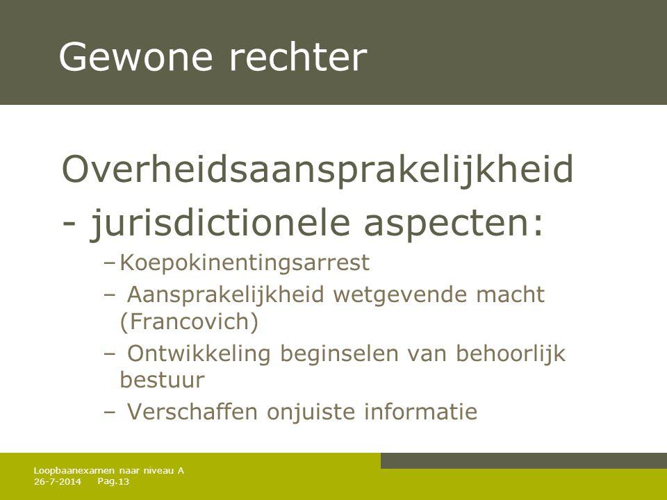 Gewone rechter Overheidsaansprakelijkheid - jurisdictionele aspecten: