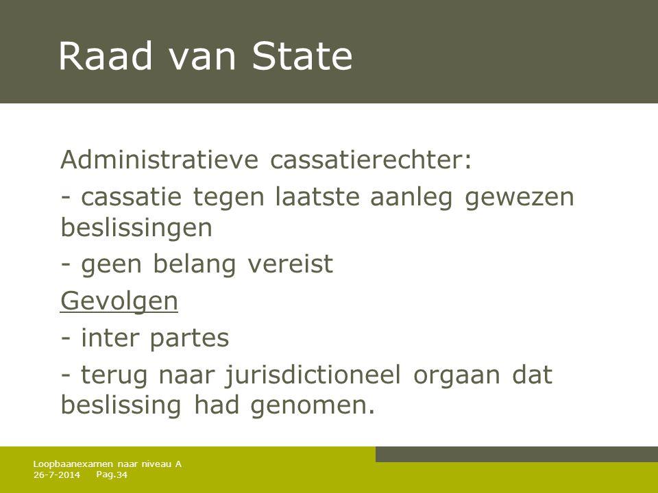 Raad van State Administratieve cassatierechter: