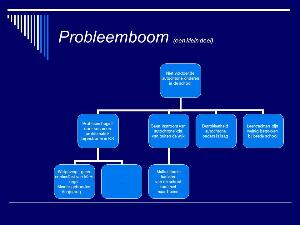 Probleemboom (een klein deel)