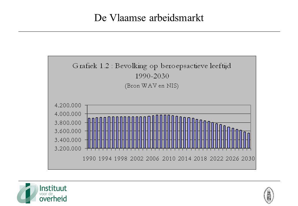 De Vlaamse arbeidsmarkt