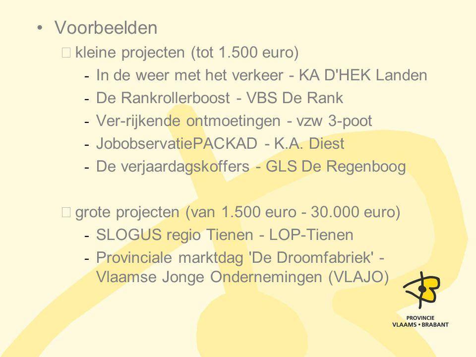 Voorbeelden kleine projecten (tot 1.500 euro)