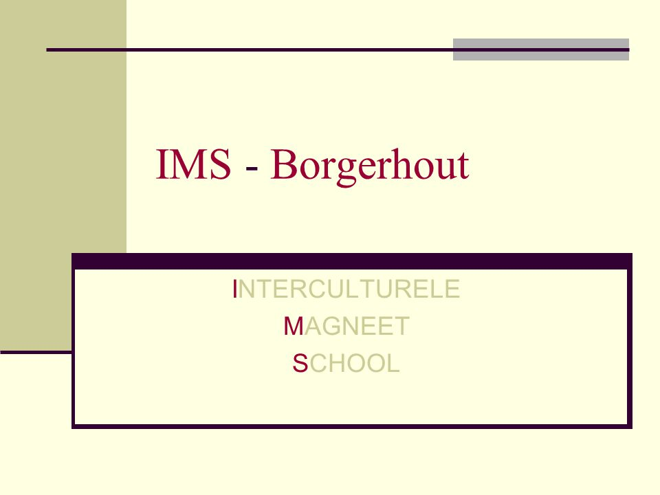 INTERCULTURELE MAGNEET SCHOOL