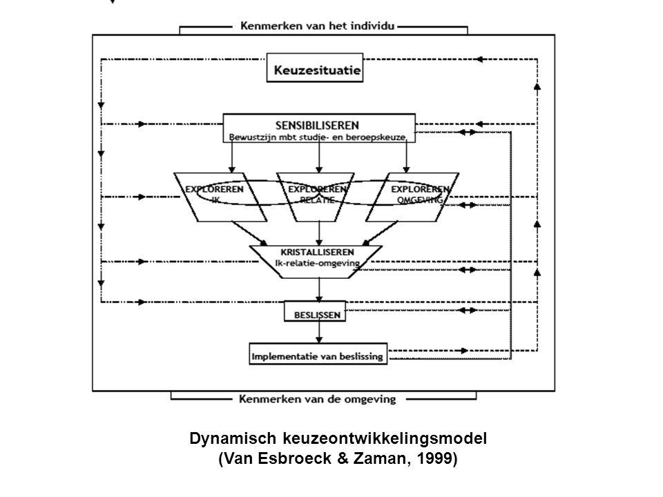 Dynamisch keuzeontwikkelingsmodel
