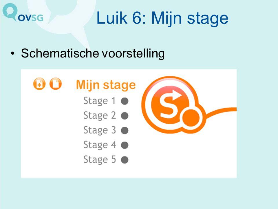 Luik 6: Mijn stage Schematische voorstelling