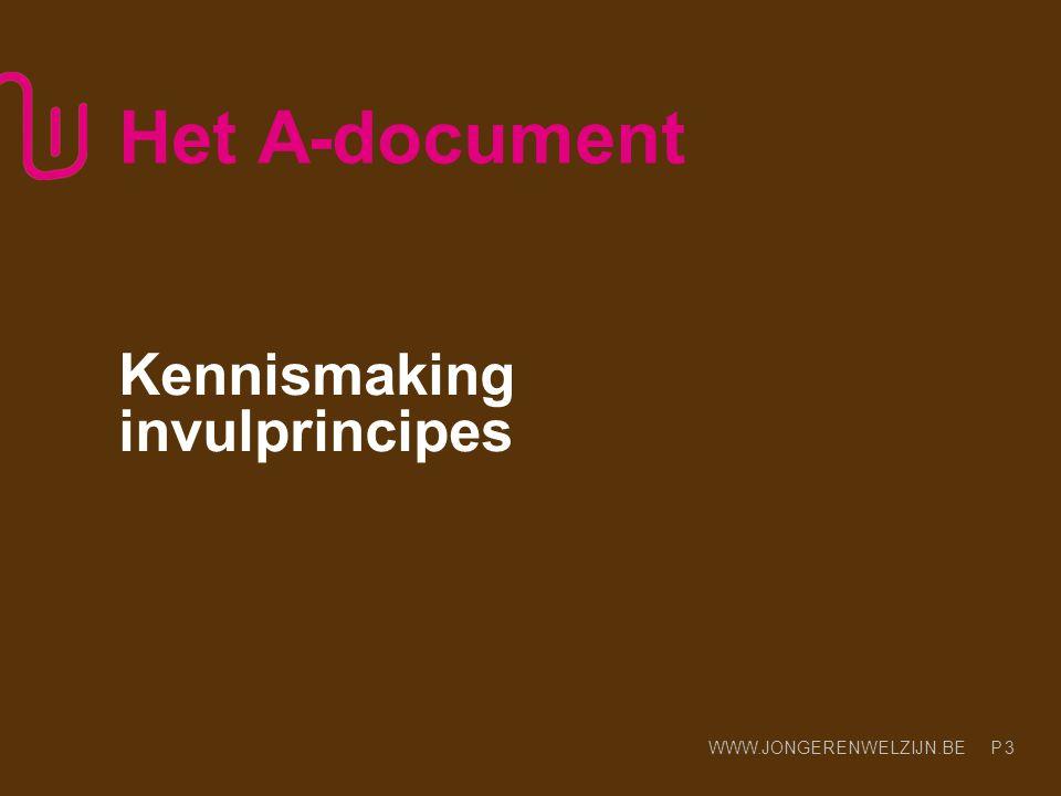 Kennismaking invulprincipes