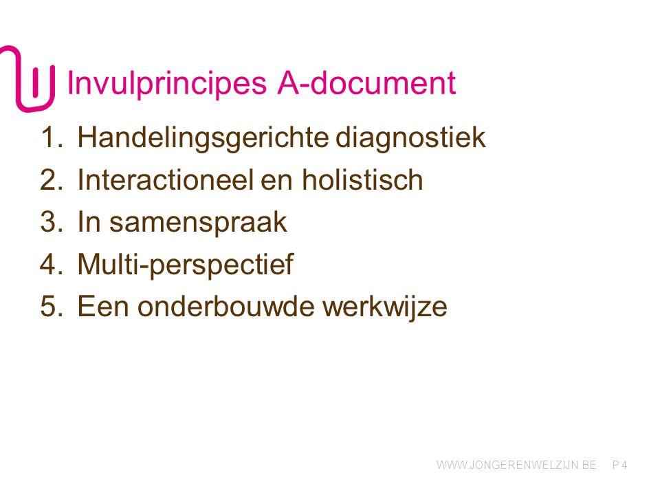 Invulprincipes A-document