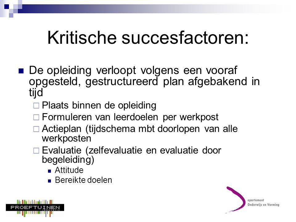 Kritische succesfactoren: