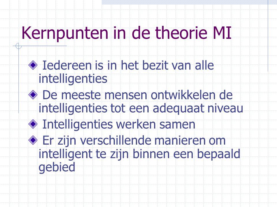 Kernpunten in de theorie MI
