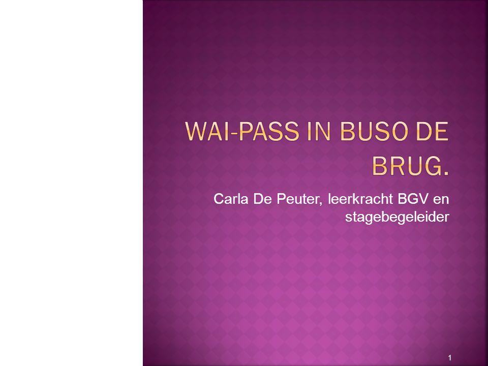 WAI-PASS in BuSO De Brug.