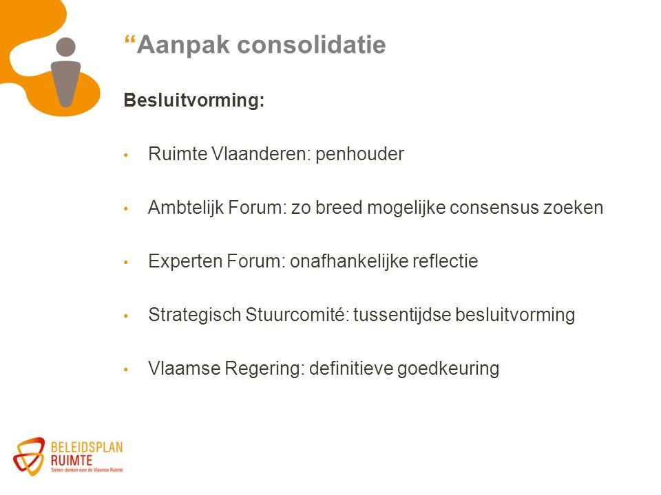 Aanpak consolidatie Besluitvorming: Ruimte Vlaanderen: penhouder