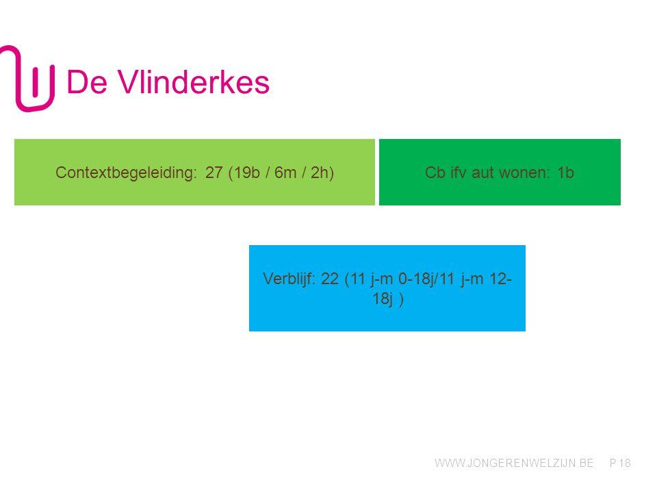 De Vlinderkes Contextbegeleiding: 27 (19b / 6m / 2h)
