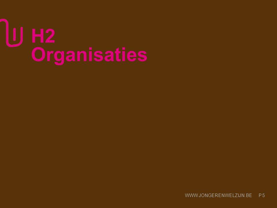 H2 Organisaties