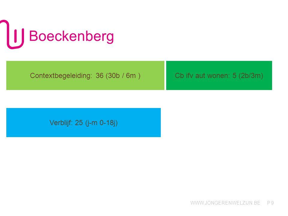 Contextbegeleiding: 36 (30b / 6m )