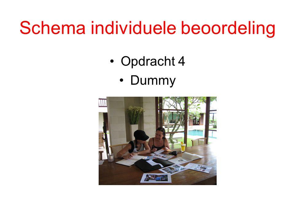 Schema individuele beoordeling