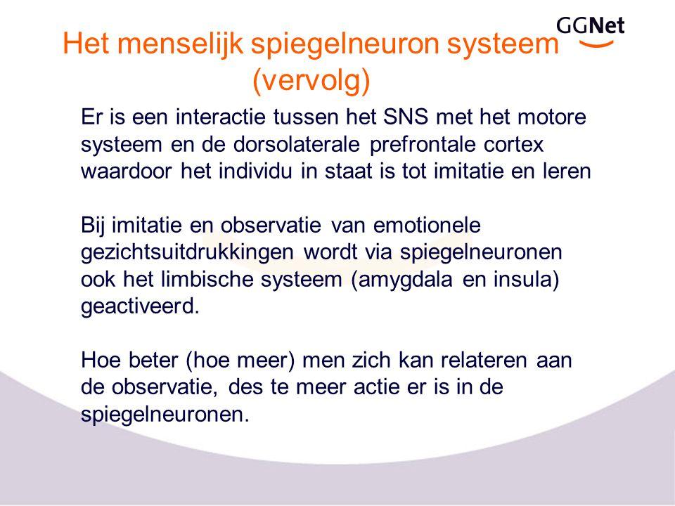 Het menselijk spiegelneuron systeem (vervolg)