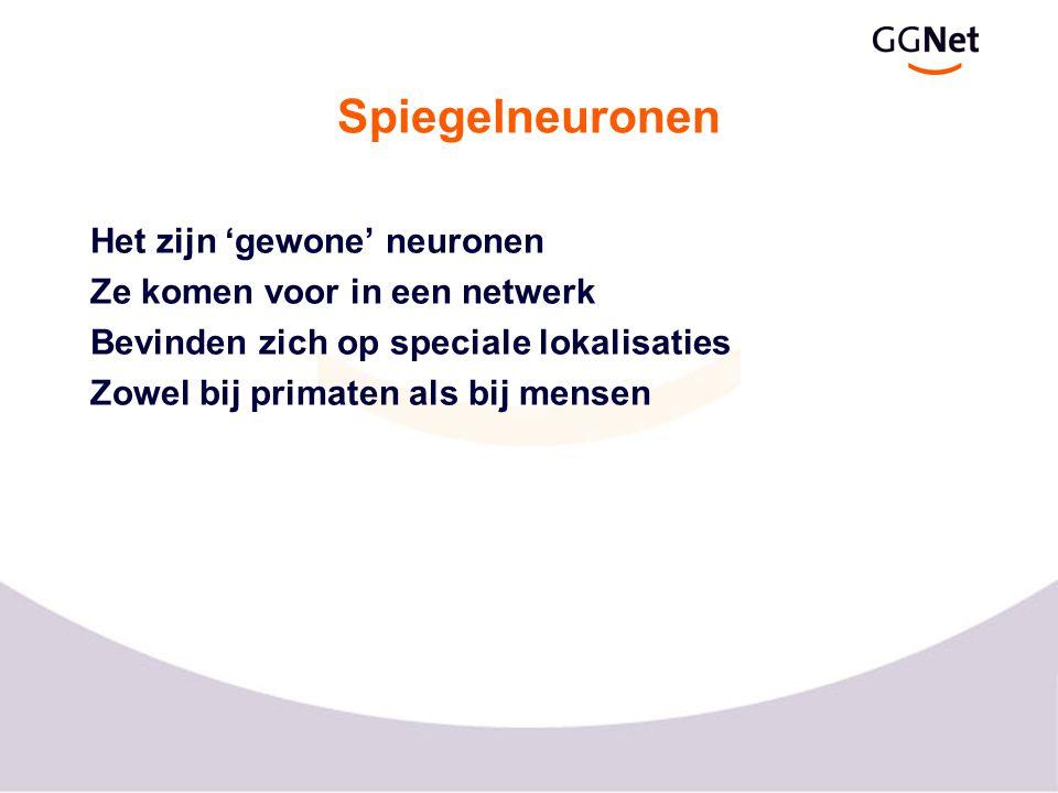 Spiegelneuronen Het zijn 'gewone' neuronen