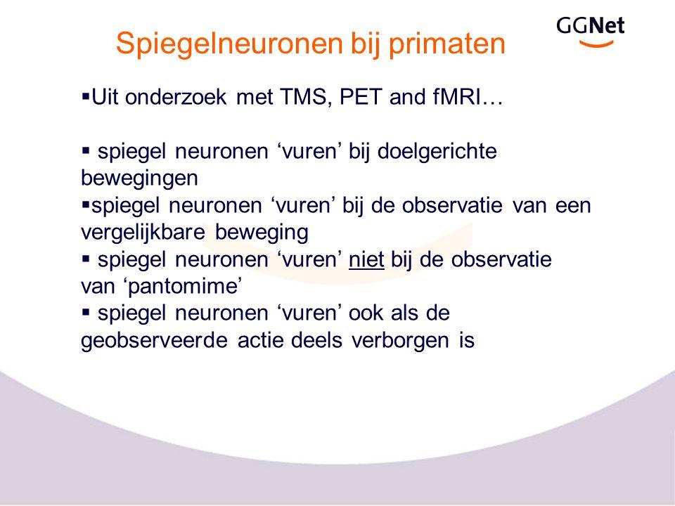 Spiegelneuronen bij primaten