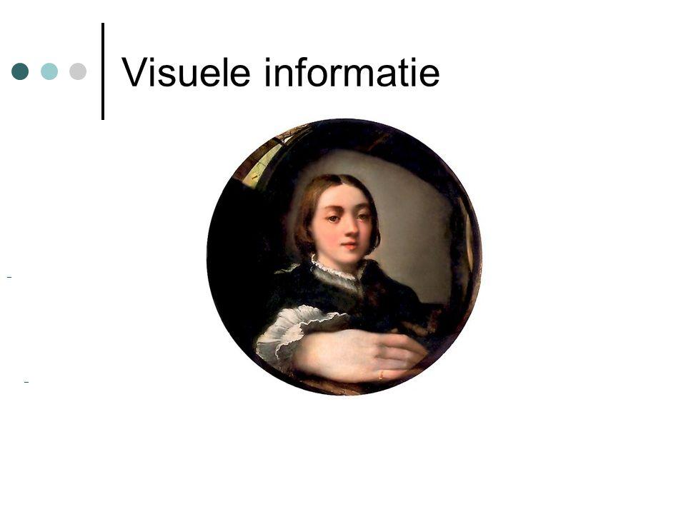 Visuele informatie
