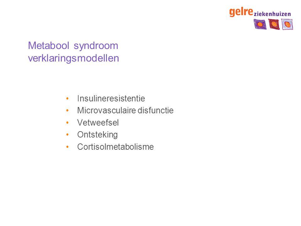 Metabool syndroom verklaringsmodellen
