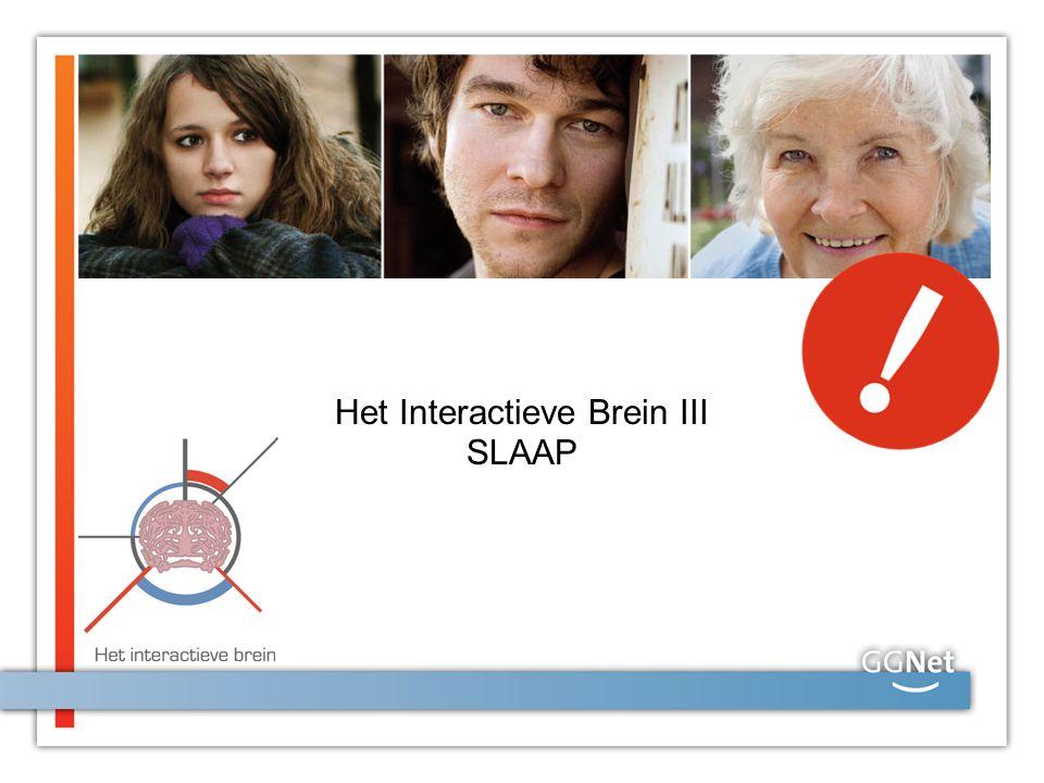 Het Interactieve Brein III SLAAP