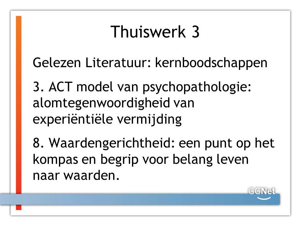 Thuiswerk 3