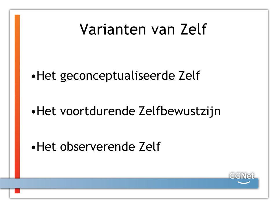 Varianten van Zelf Het geconceptualiseerde Zelf