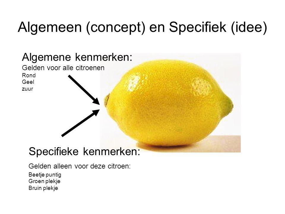 Algemeen (concept) en Specifiek (idee)