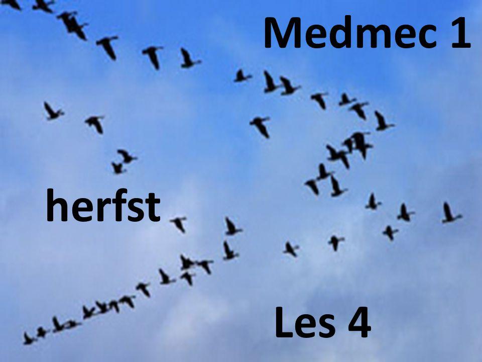 Medmec 1 herfst Les 4