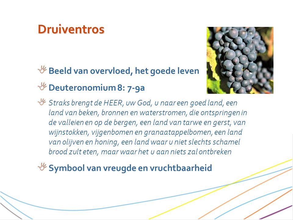 Druiventros Beeld van overvloed, het goede leven Deuteronomium 8: 7-9a