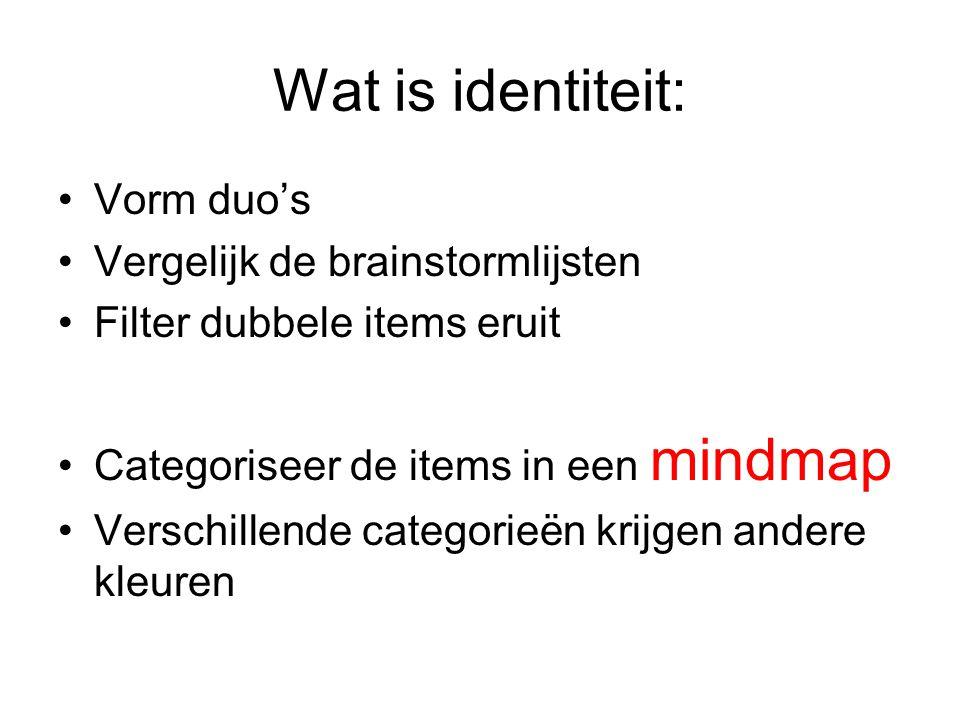 Wat is identiteit: Vorm duo's Vergelijk de brainstormlijsten