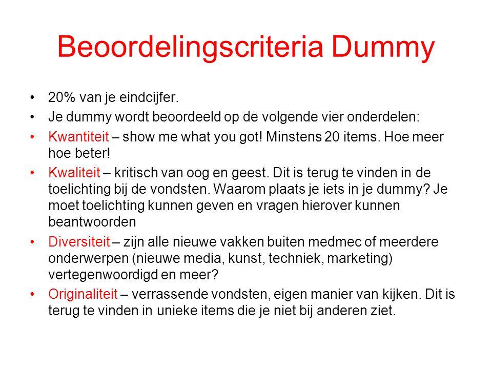 Beoordelingscriteria Dummy
