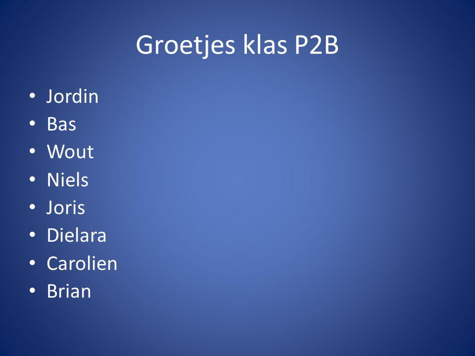 Groetjes klas P2B Jordin Bas Wout Niels Joris Dielara Carolien Brian