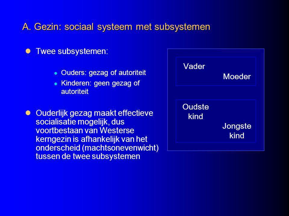 A. Gezin: sociaal systeem met subsystemen