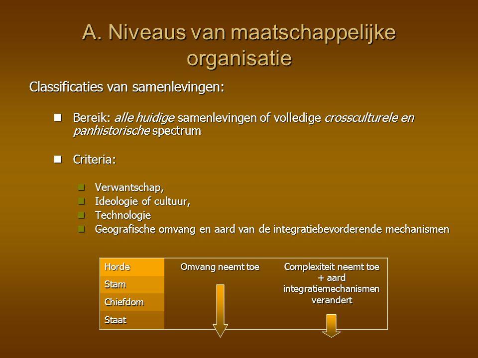 A. Niveaus van maatschappelijke organisatie