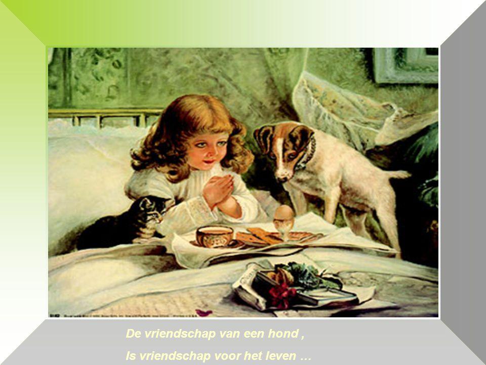 De vriendschap van een hond , Is vriendschap voor het leven …