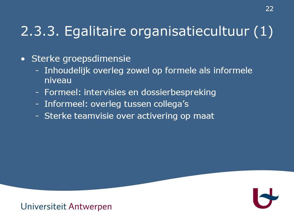 2.3.3. Egalitaire organisatiecultuur (2)