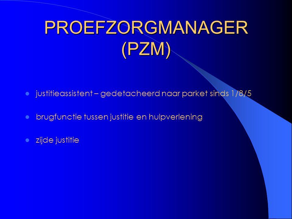 PROEFZORGMANAGER (PZM)