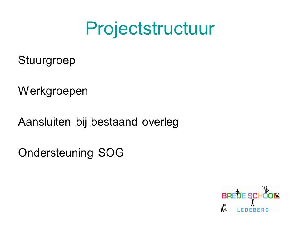 Projectstructuur Stuurgroep Werkgroepen