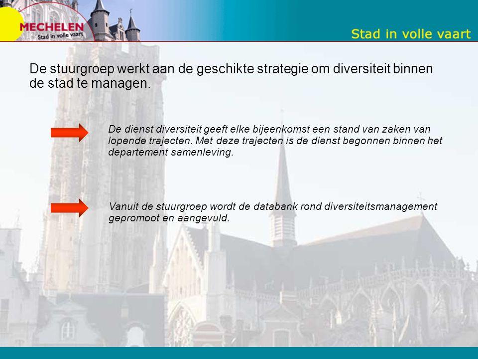 De stuurgroep werkt aan de geschikte strategie om diversiteit binnen de stad te managen.