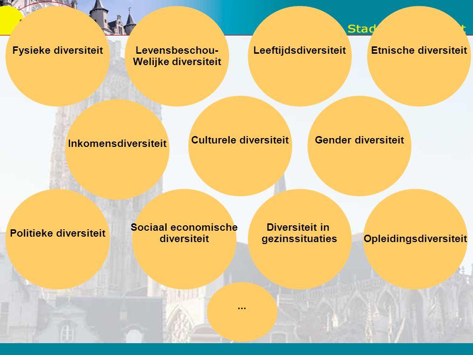 Leeftijdsdiversiteit Etnische diversiteit
