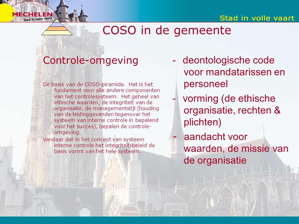 COSO in de gemeente Controle-omgeving