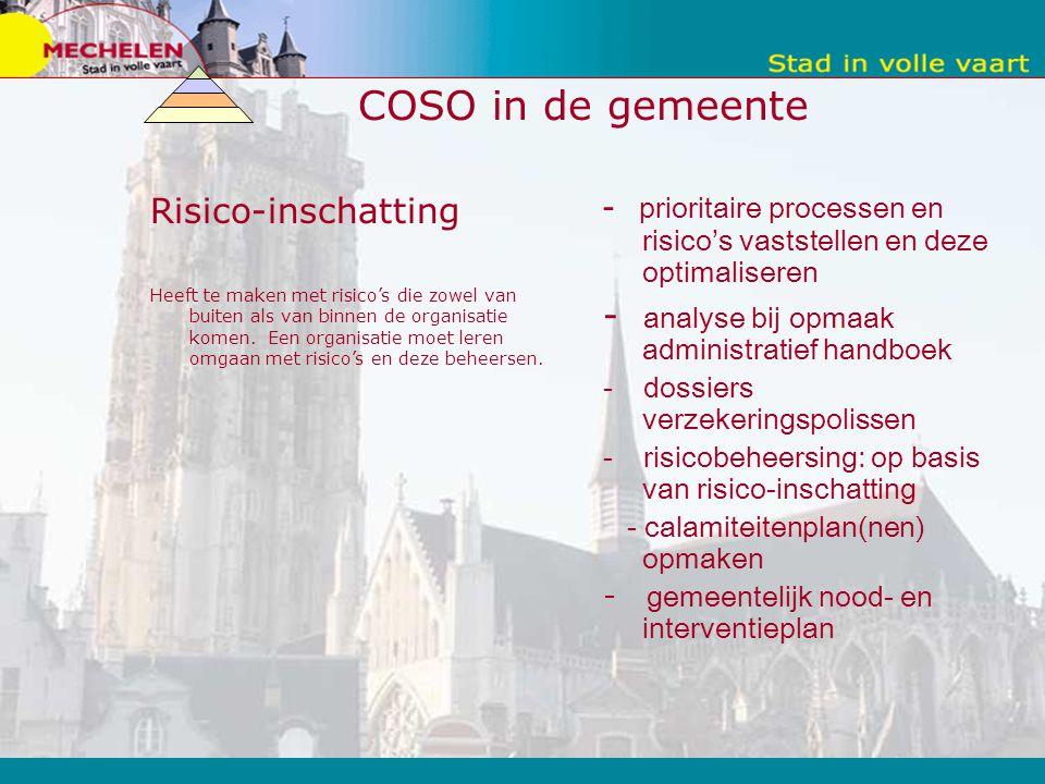 COSO in de gemeente Risico-inschatting