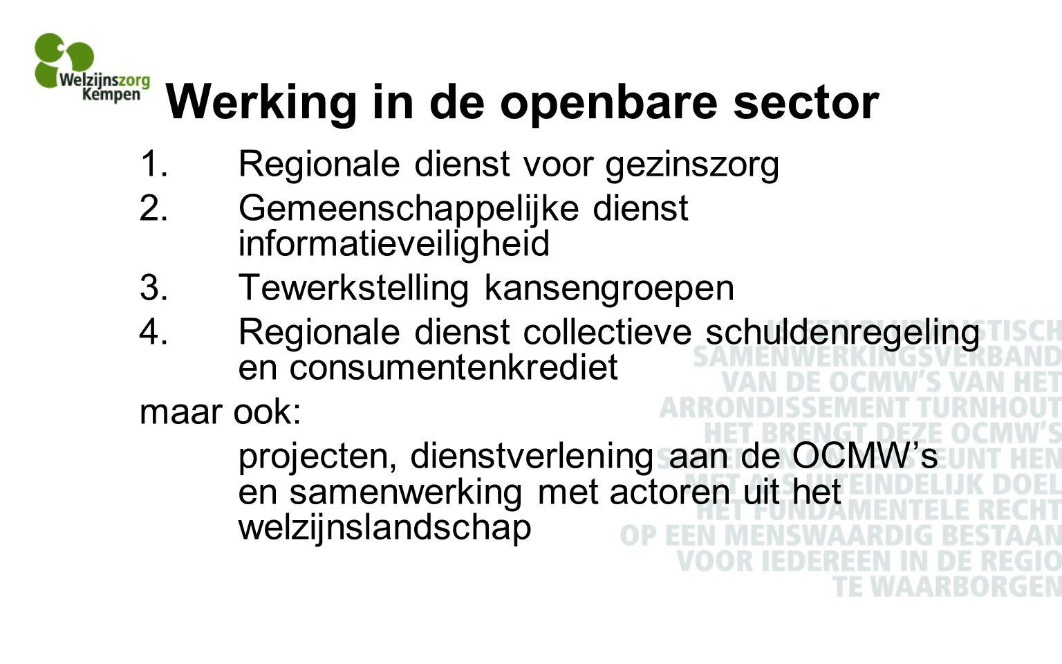 Werking in de openbare sector