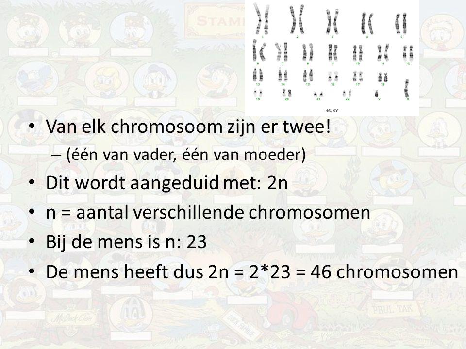 Van elk chromosoom zijn er twee! Dit wordt aangeduid met: 2n
