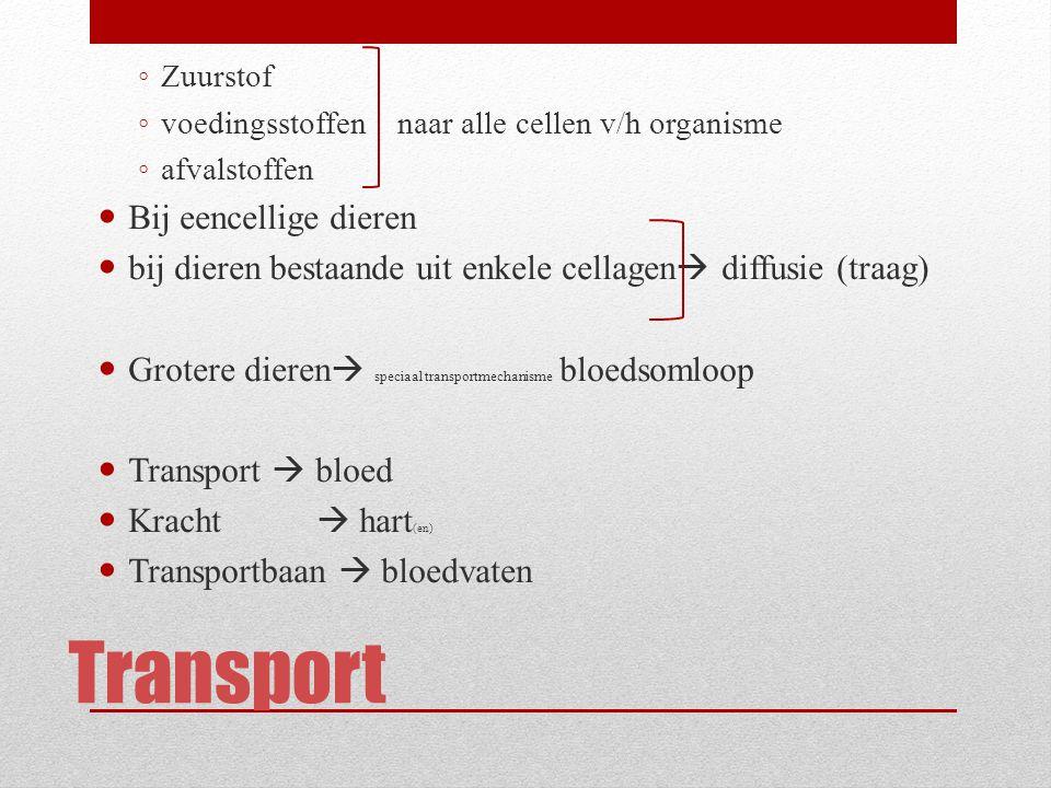 Transport Bij eencellige dieren
